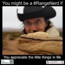 Nerd Memes - 67 best range nerd memes images on pinterest lineup nerd memes