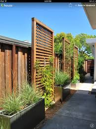 Backyard Privacy Landscaping Ideas by Idea For Right Outside Kitchen And Bedroom Window To Block