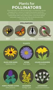 Anticipating Climate Change In Your Garden Fix Com
