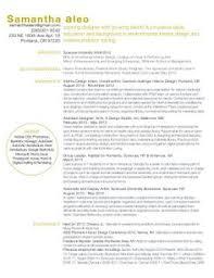 professional interior designer resume http jobresumesample com