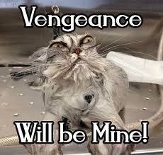 Mine Meme - vengeance will be mine reaction images know your meme