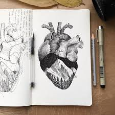 best 25 anatomical heart drawing ideas on pinterest anatomical
