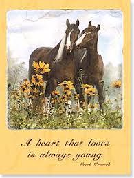books cards magazines at schatzlein saddle shop