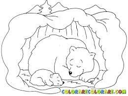 coloring pages animals hibernating hibernating animals coloring pages hibernating bear coloring pages