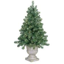 the gki bethlehem lighting collection 4 potted slim olympia pine