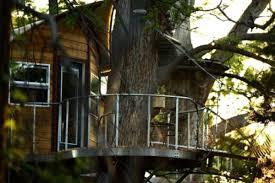 tree house rentals near san antonio