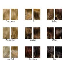catwalk hair extensions balmain catwalk pony salon supplies