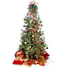 nashville tree disposal and traditions around the world
