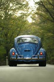 punch buggy car drawing 1629 best volkswagen images on pinterest volkswagen beetles