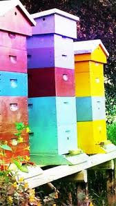 daisey u0026 bee beehive box for honey bees custom painted bee hive