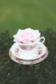roses teacups mossong photography tea party teacup