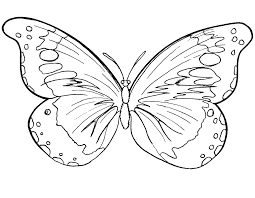 butterfly to color 4427 869 671 coloring books