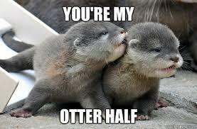 Otter Memes - you re my otter half otter half quickmeme
