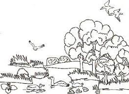 coloring pages for landscapes landscapes animal habitats landscapes coloring pages landscapes