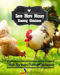 how to save money raising backyard chickens aosom