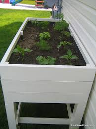 how to build an elevated vegetable garden box best idea garden