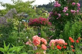 Photo Flower Garden by Giverny Monet Garden