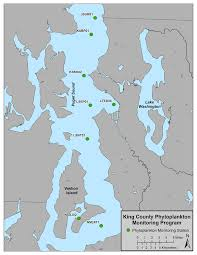 puget sound marine monitoring