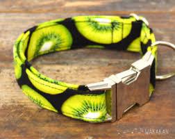 tuesday collar etsy kiwi dogs dog collar etsy