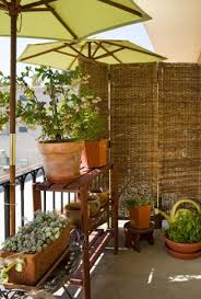 interesting apartment patio privacy ideas plain ideas patio for