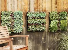 Wall Hanging Planters by Best 25 Living Wall Planter Ideas On Pinterest Vertical Garden