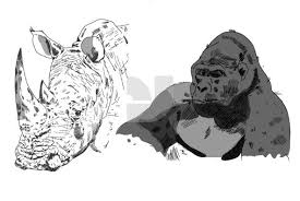sketches of africa graphics youworkforthem