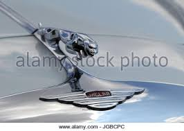 leaping cat bonnet mascot on classic jaguar stock photo royalty