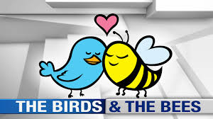 the u201cbirds and the bees u201d differ for boys and girls psychology today