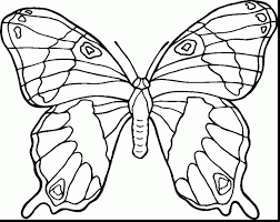 awesome blank butterfly coloring pages with butterflies coloring