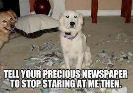 Newspaper Meme Generator - meme creator tell your precious newspaper to stop staring at me then