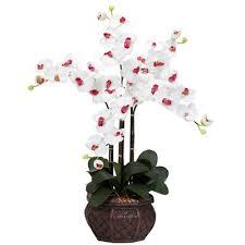 Artificial Flower Arrangement In Vase Nearly Natural Phalaenopsis With Decorative Vase Silk Flower