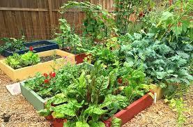 2016 vegetable garden planning