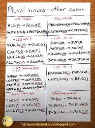 bureau plural plural nouns anchor chart uncommon cases e g words from