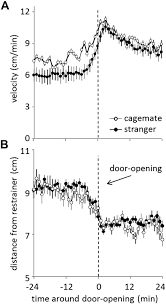 pro social behavior in rats is modulated by social experience elife