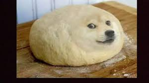 Top Doge Memes - best doge memes funny youtube