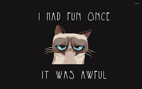 Grumpy Kitty Meme - grumpy cat wallpaper meme wallpapers 19052