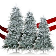 gardenersdream gardenersdream frost vermont spruce artificial