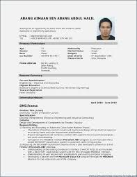 professional resume template free download malaysia resume format download globish me