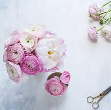 Fake Flowers My Camera My How To Rock Instagram Like A Superstar C Colli Fat Mum Slim