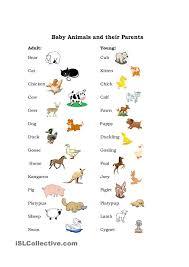324 best english vocabulary images on pinterest english language