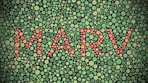Color Blind Plate Test The Intro For Marv Studios Is A Red Green Ishihara Plate Or Red