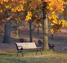 Commercial Grade Park Benches 38 Best Unique Park Benches Images On Pinterest Park Benches A