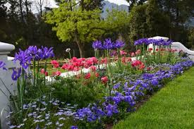 Different Types Of Garden - gardens of chambray estate franschhoek
