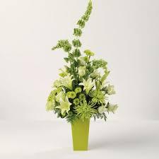 bells of ireland flower bells of beauty huntington florists a pocket of petals