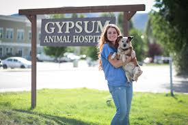 About Our Team Mountain Health Center Gypsum Animal Hospital Veterinarian In Gypsum And Eagle Co Usa
