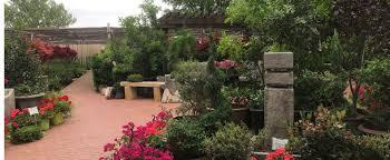 Flower Delivery San Angelo Tx - lawn care company in san angelo tx scherz landscape