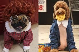 Puppy Halloween Costumes Freshpet Pet Halloween Costumes U0027ll Love