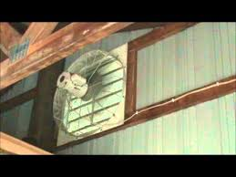 shutter exhaust fan 24 large dayton 24 inch louvered exhaust fan for polebarn july 2011