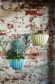 163 best fleur green thumb images on pinterest plants