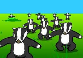 Badger Memes - badger badger badger know your meme